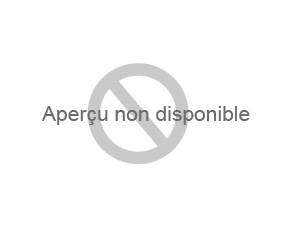Une carte de France à plat sur laquelle est posé une tour eiffel miniature en fer